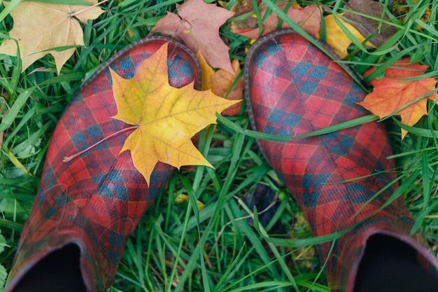 秋のカエデの葉を持つ女性のゴム長靴は草の上