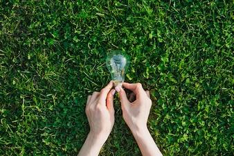 Female's hand holding light bulb over green grass