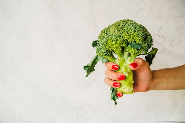 Female's hand holding raw green broccoli on white textured backdrop
