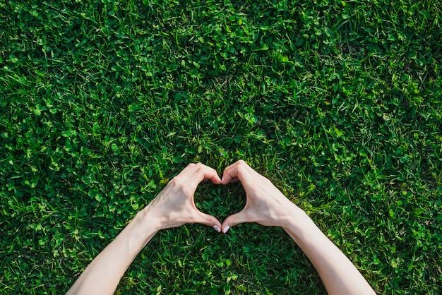 Рука женщины делает форму сердца над зеленой травой