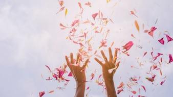 日光の空に対して花びらを投げて女性の手