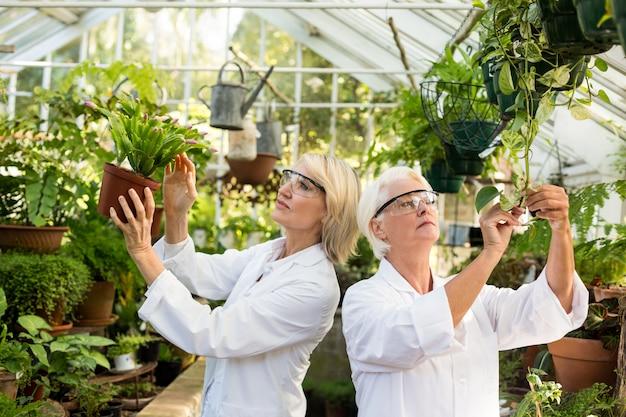Женщины-ученые осматривают горшечные растения