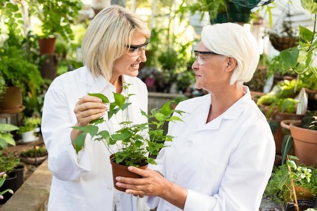 Женщина-ученая держит растение в горшке