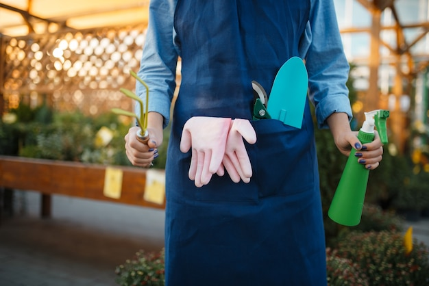 Female seller in apron holds gardening tools in shop for floriculture. woman in apron sells flowers in florist store
