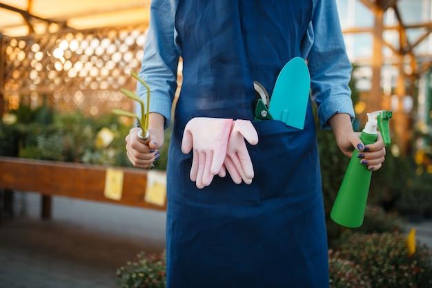 エプロンの女性売り手は、花卉園芸のための店で園芸工具を持っています。エプロンの女性が花屋で花を売る