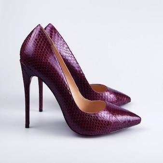 白い背景の上の女性の靴