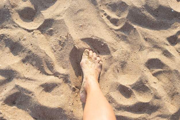 Female slender leg on golden sand. rest on the seaside.