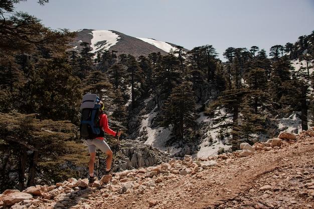 背景の森と山の女性観光客