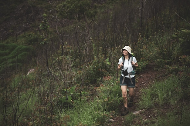 Female tourist walking into the wood with backpack and binocular. girl camper explore in the forest.
