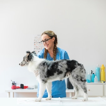 Female veterinarian holding dog standing on table in clinic