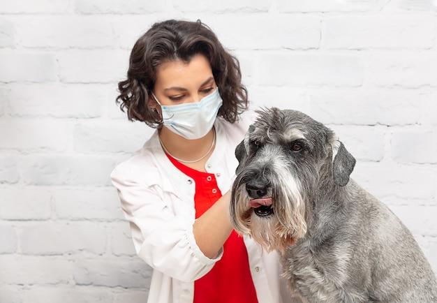 A female veterinarian in a protective mask examines a dog during an appointment at the clinic
