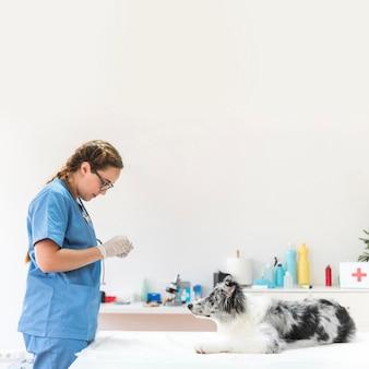 Женский ветеринар, стоящий рядом с собакой на столе в клинике