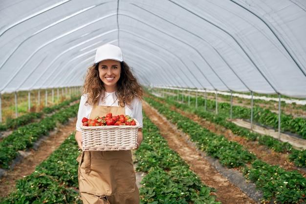 Работница держит корзину со свежей клубникой