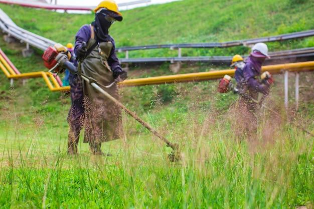女性の作業服保護服は芝刈り機で芝生を刈り取ります