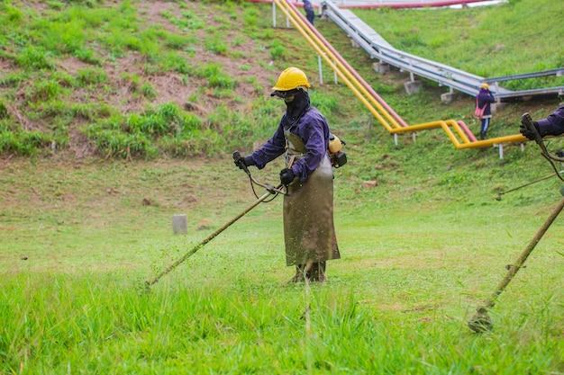 여성 작업복 보호복은 잔디 깎는 기계로 잔디를 깎는다