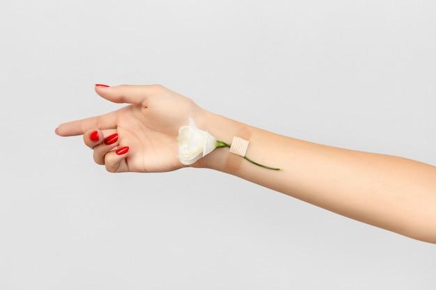 Женская рука с цветком на сером