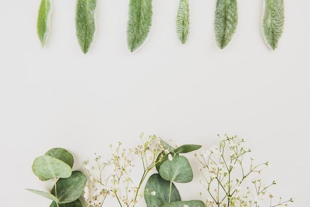 Женственная свадьба в стиле рабочего стола макет канцелярских принадлежностей. цветы гипсофилы, сухие зеленые листья эвкалипта на белом фоне. плоская планировка, сверху