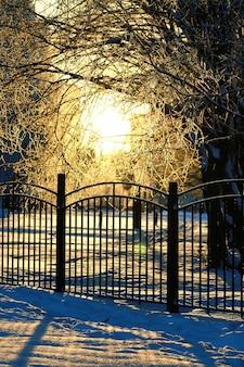 울타리 덮인 눈 겨울 공원