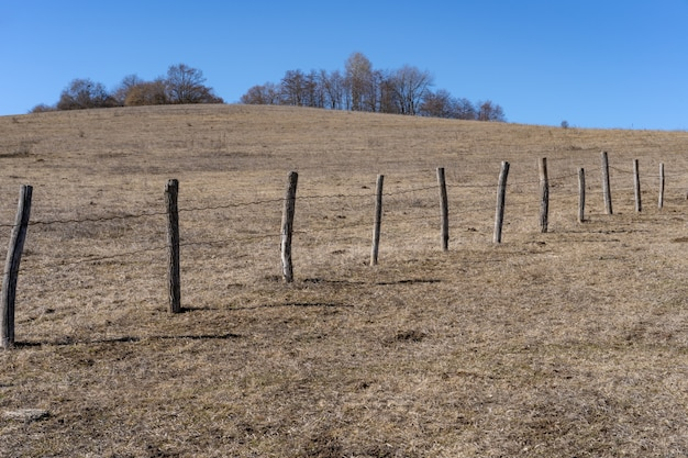 Забор в поле из стволов деревьев