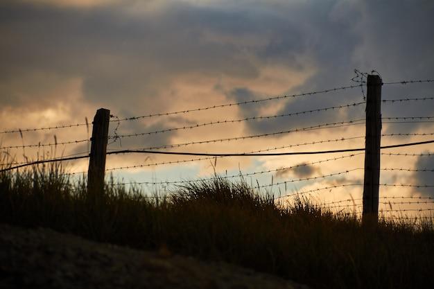Забор из колючей проволоки на границе с монголией. укокское плато алтая. сказочные холодные пейзажи