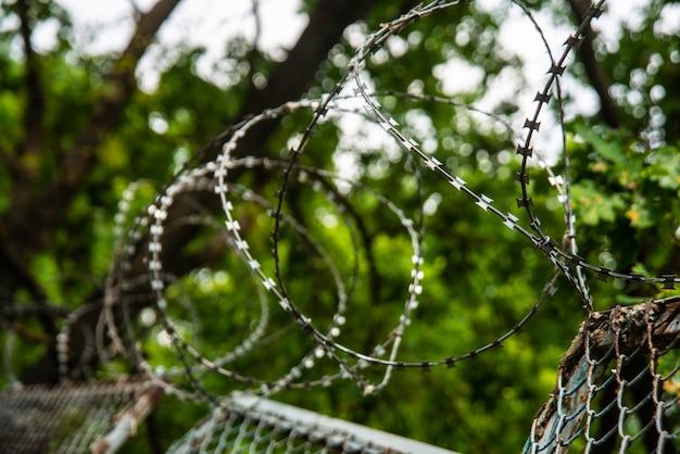 Забор с колючей проволокой на открытом воздухе на фоне неба и деревьев
