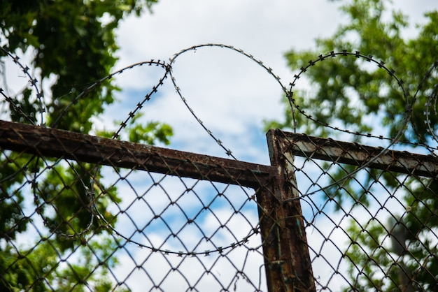 A fence with barbed wire outdoor on sky and tree