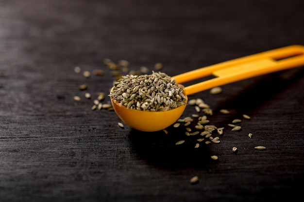 Fennel seeds in spoon