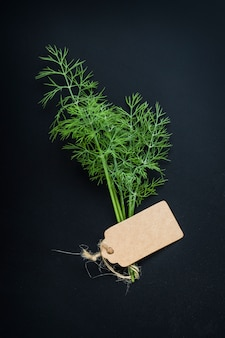 Fennel with a blank label