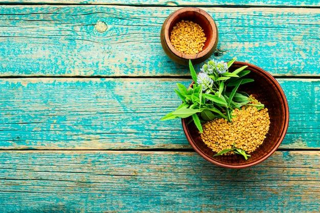 신선한 식물이 있는 호로파 씨앗. 텍스트를 위한 공간