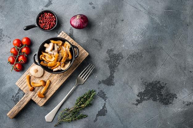 発酵食品:キノコ保存セット、灰色の背景、上面図フラットレイ、テキストコピースペース用のスペース