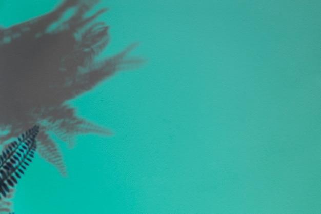 ターコイズブルーの背景にシダの暗い葉