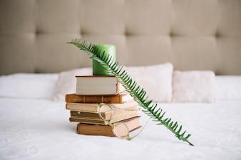 Fern leaf leaning against old books