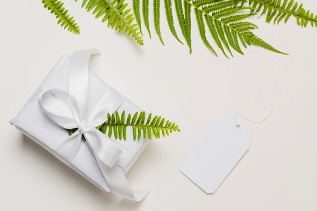 Fern leaf on white gift box with label over plain backdrop