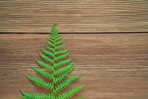 素朴なテーブルの自然な背景画像にシダの葉