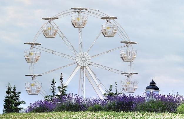 空を背景にした公園の観覧車とラベンダーの茂み。