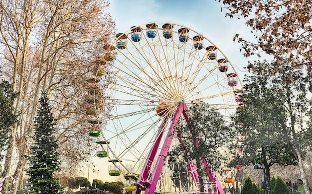Колесо обозрения в окружении деревьев в парке развлечений