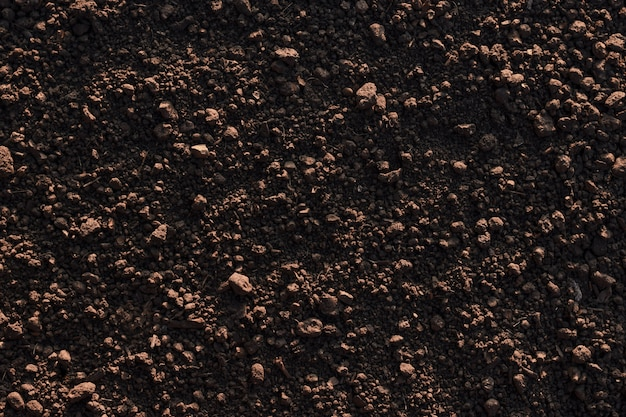 Fertile loam soil suitable background