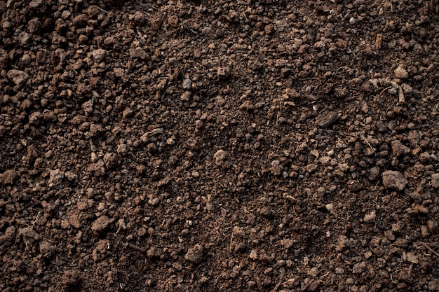 Fertile loam soil suitable for planting, soil texture background.