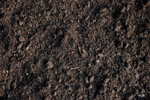 Fertile loam soil suitable for planting, soil texture.