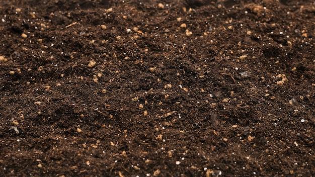 Fertile soil for planting