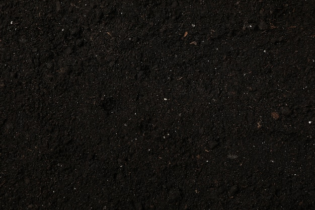 Fertile soil texture. agriculture and gardening