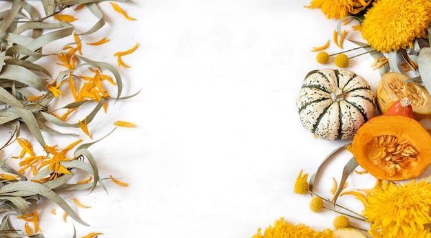 Festive autumn decor from pumpkins and flowers on a white background. concept of thanksgiving day or halloween. flat lay autumn composition with copy space.