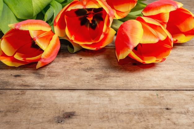 A festive bouquet of fresh tulips on a vintage wooden table
