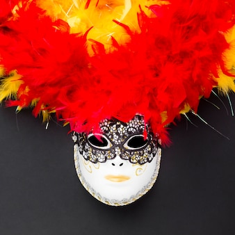 Festive carnival mask with feathers