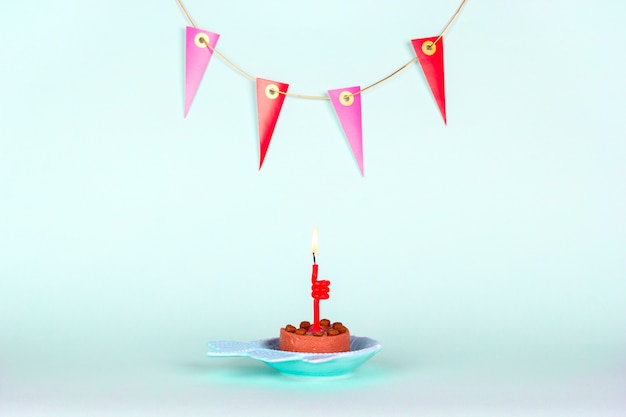 Festive cat cake with burning candle and decoration on wall on light background