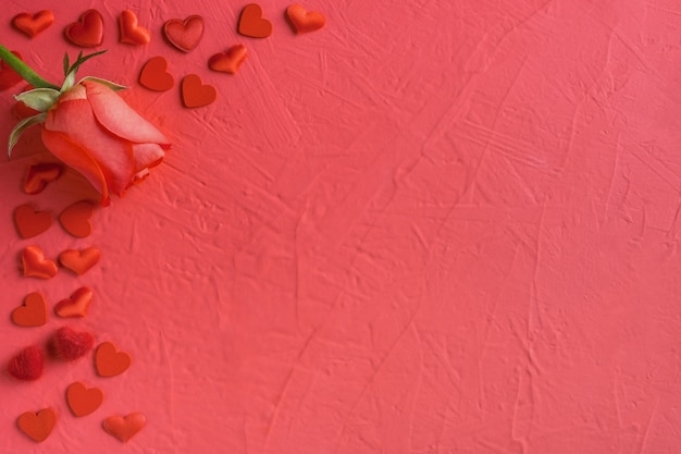 Festive composition from red rose and hearts scattered on pink for valentines day