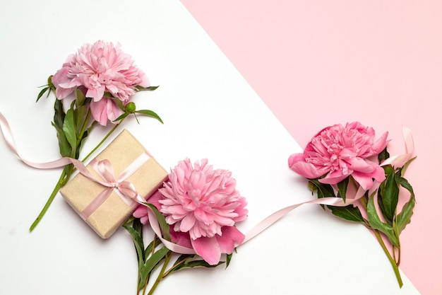 Festive concept of peonies and gifts on white and pink