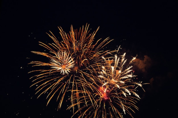 Festive fireworks in the dark night sky.