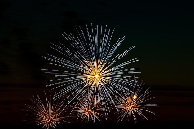 휴일 하늘에서 축제 불꽃 놀이.