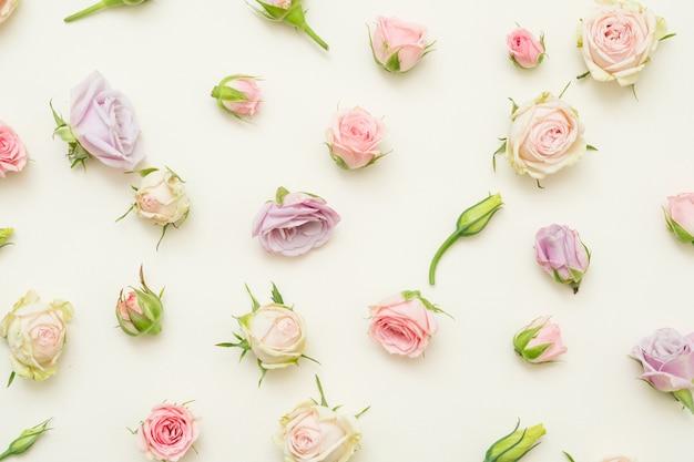 Праздничный цветочный декор. головы розовых роз на поверхности слоновой кости. плоская планировка.
